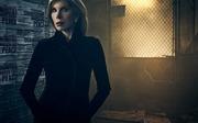傲骨之战第三季_戴安·洛克哈特Christine Jane Baranski剧照