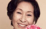 我亲爱的朋友们 金惠子