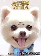 三妹(俊介博美饰演)