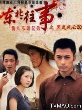 东北往事之黑道风云20年剧情介绍(1-23全集)_电视剧